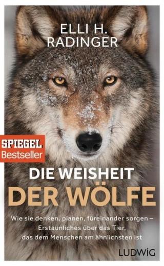 Die Weisheit der Wölfe  Wie sie denken, planen, füreinander sorgen. Erstaunliches über das Tier, das dem Menschen am ähnlichsten ist
