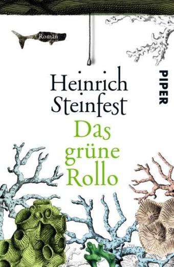 Steinfest_Das grüne Rollo
