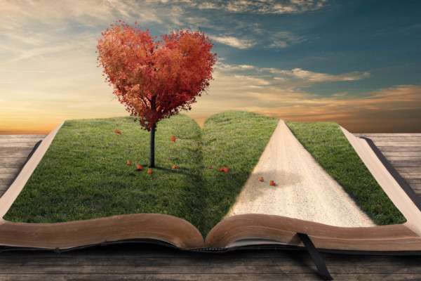Roman - Buch mit Rasen auf den Seiten