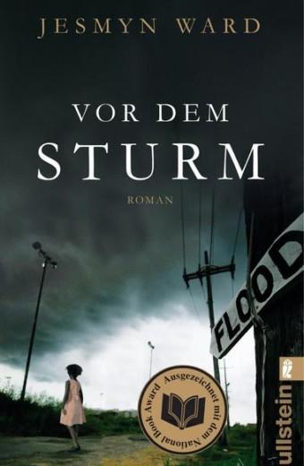 vor_dem_sturm
